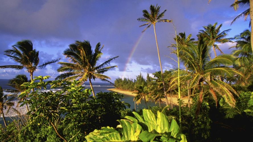 Hawaii kauai parks beaches wallpaper