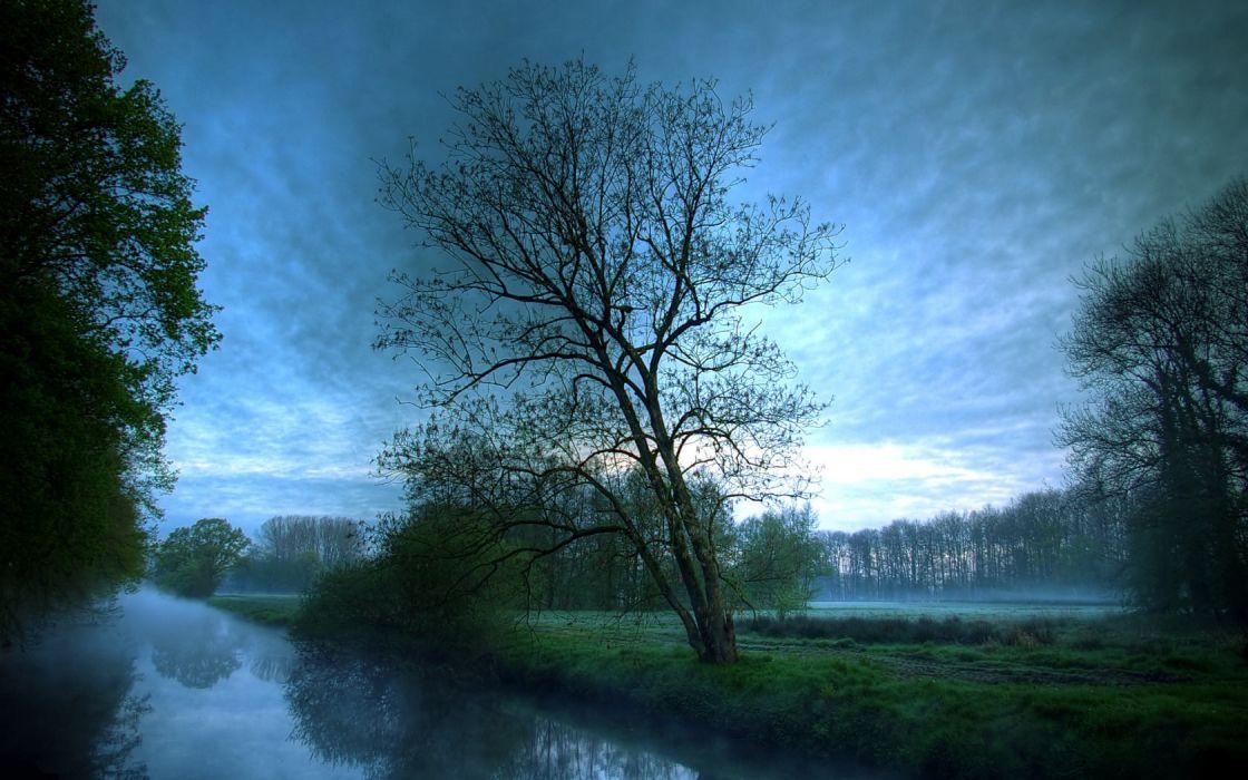 landscapes trees fog rivers reflections wallpaper