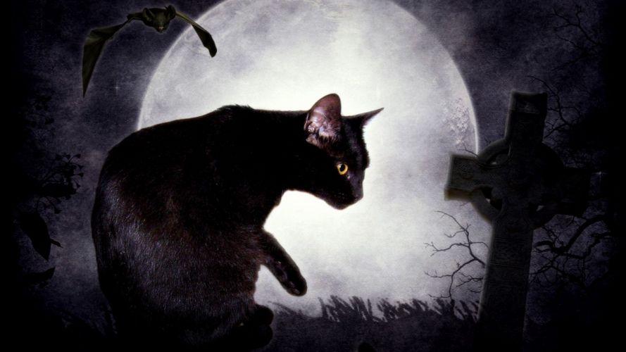 fantasy dark cats Black Cat fantasy art digital art cemetery Edgar Allan Poe bats The Black Cat tombs wallpaper