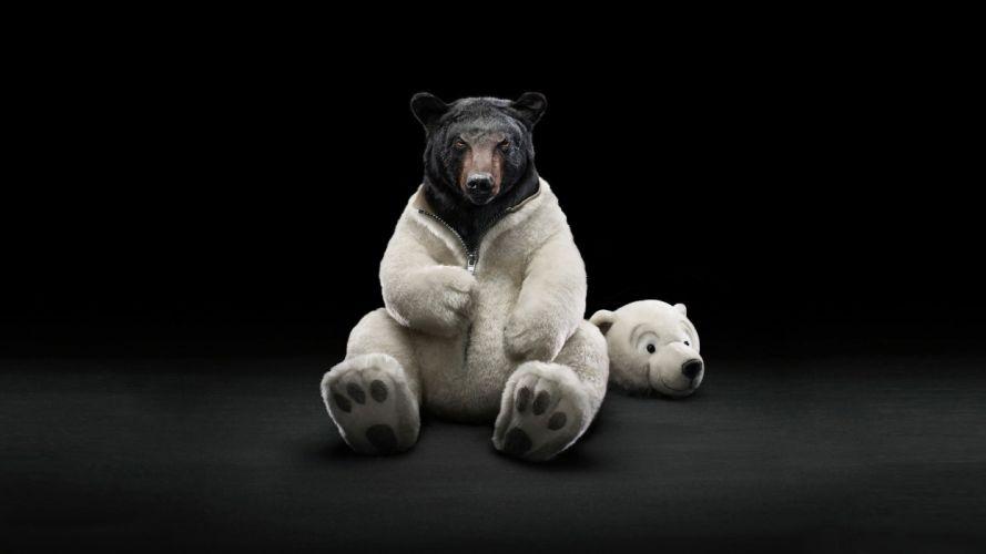 funny bears wallpaper