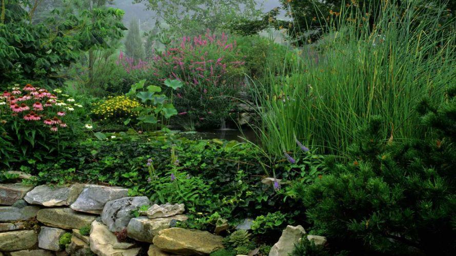 water garden Tennessee morning wallpaper
