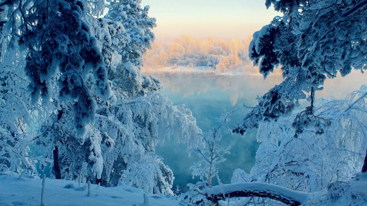 Landscapes Nature Winter Snow Trees Frozen Wallpaper
