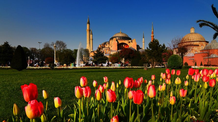 cityscapes tulips Turkey Hagia Sophia Istanbul cities mosques wallpaper