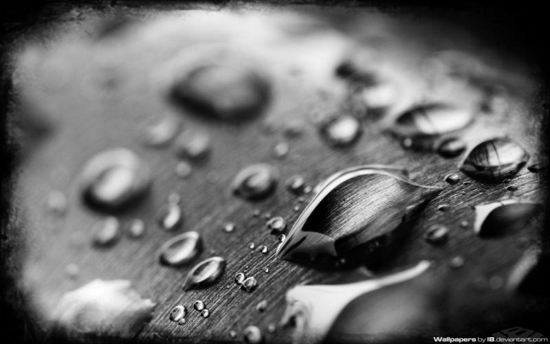 water wet liquid water drops condensation drops wallpaper
