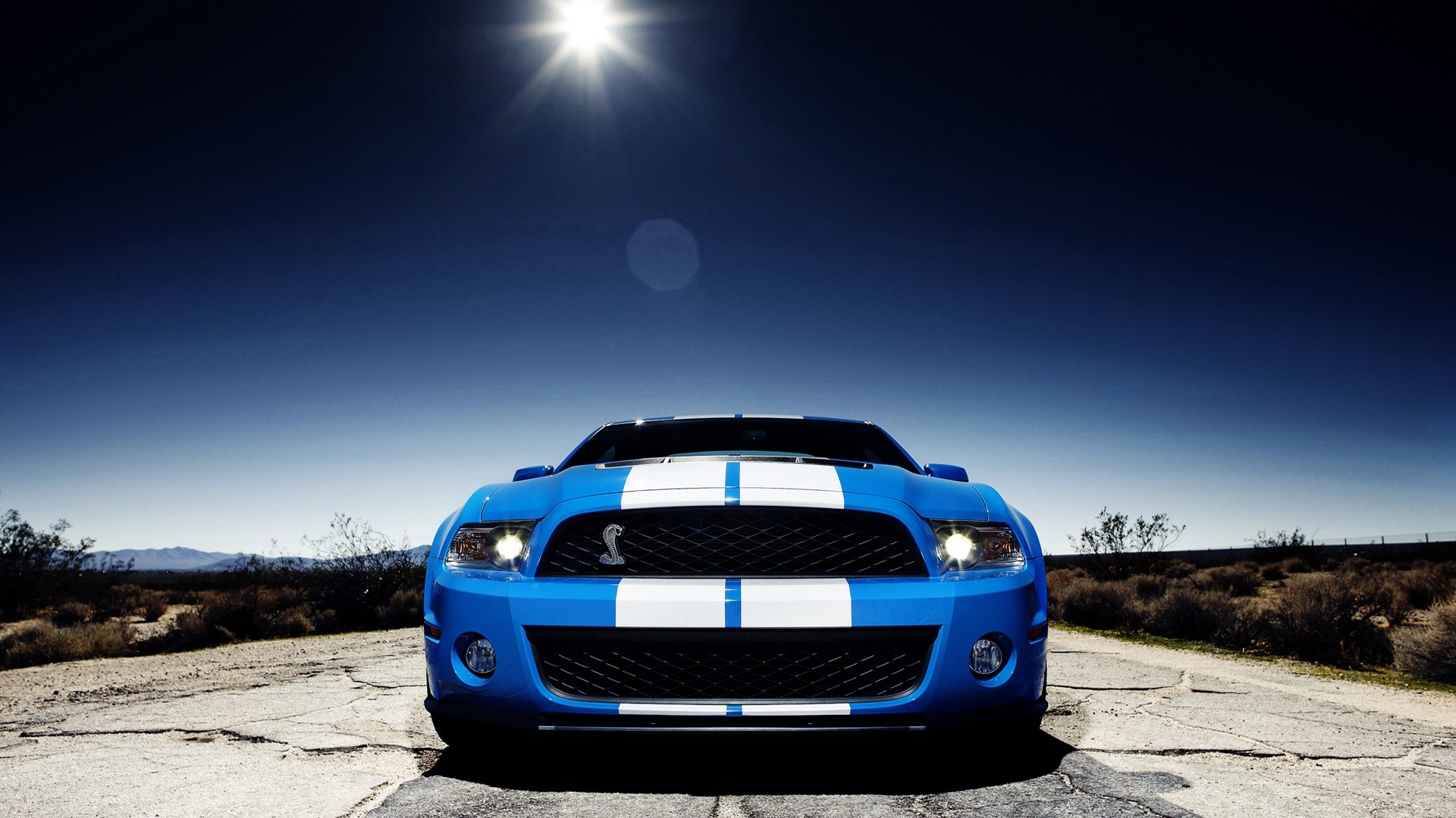 Cars Ford Mustang Shelby Gt500 Wallpaper 1920x1080 190199 Wallpaperup