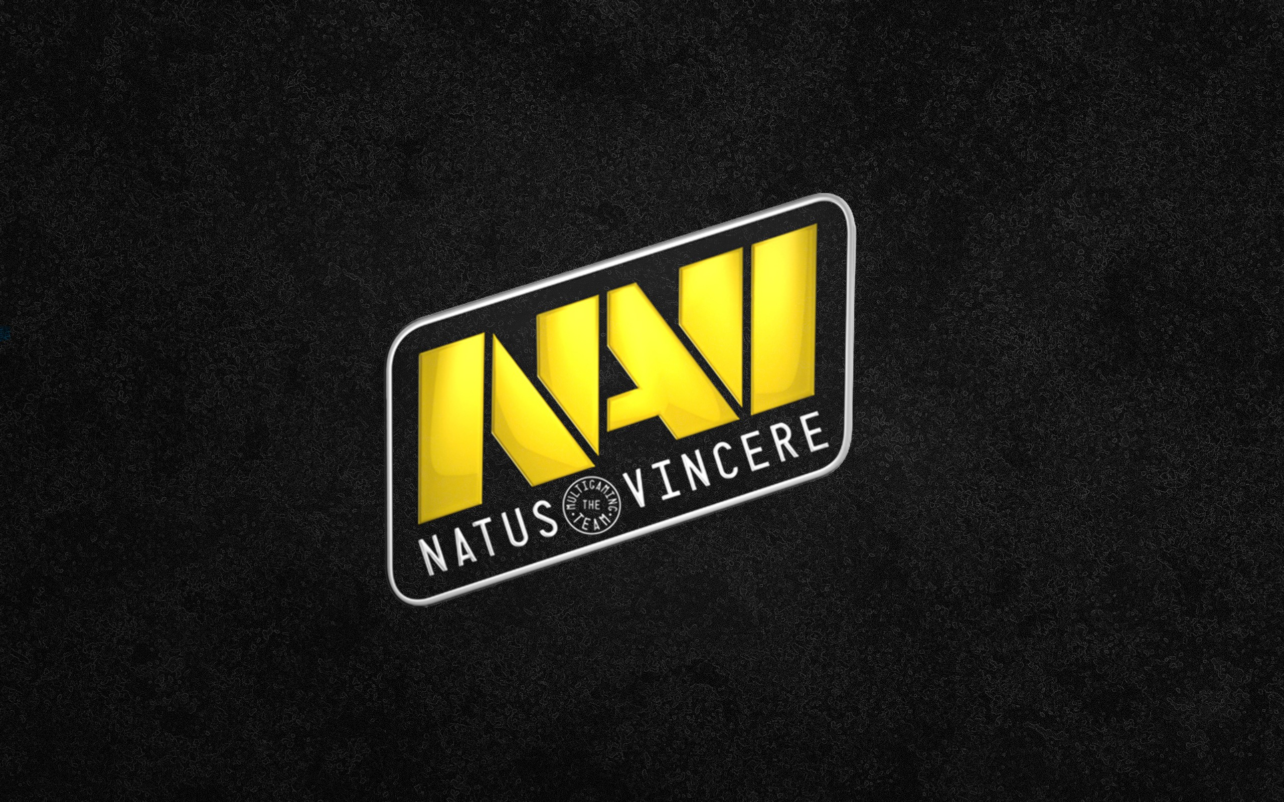 Navi Natus Vincere dota2 wallpaper | 2560x1600 | 190406 | WallpaperUP