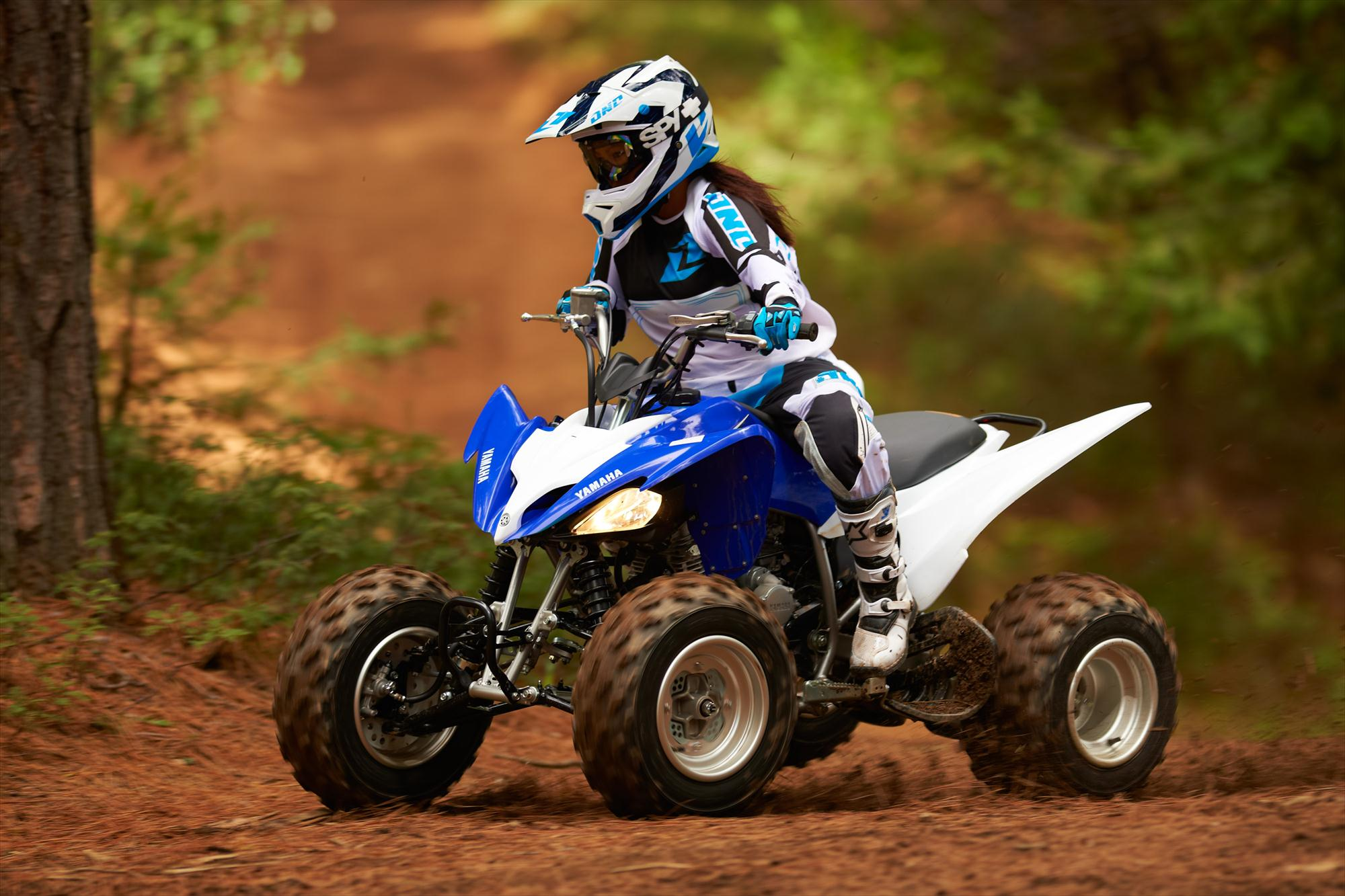 yamaha raptor atv quad offroad motorbike bike dirtbike ew. Black Bedroom Furniture Sets. Home Design Ideas