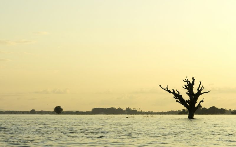 landscapes trees silhouettes lonely travel lakes Myanmar wallpaper