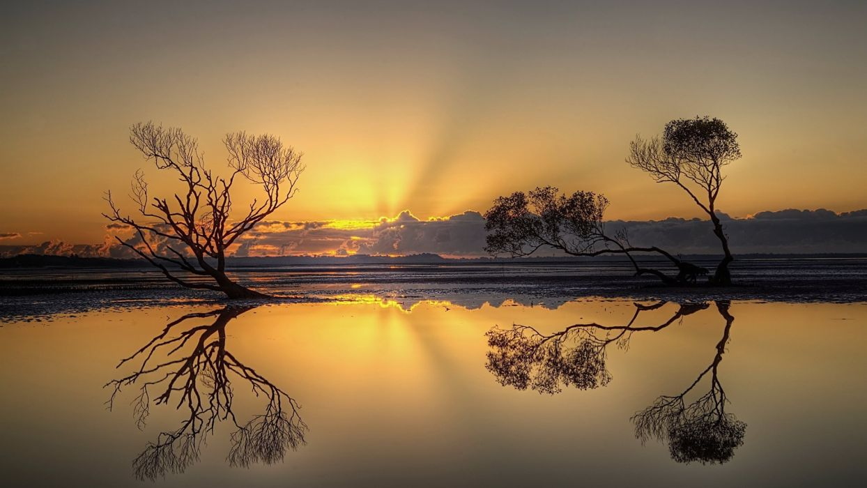 sunset landscapes nature horizon trees Africa lakes reflections Wild Africa red sky wallpaper