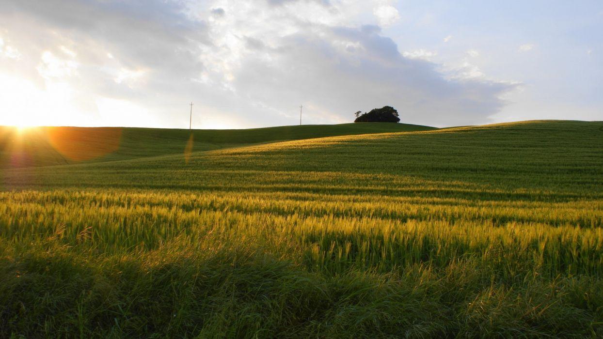 sunset landscapes nature fields land wallpaper