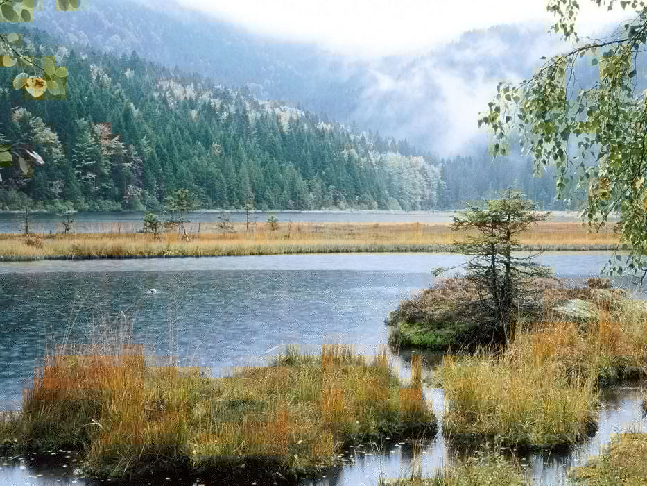 mountains landscapes nature forests lakes rivers wallpaper