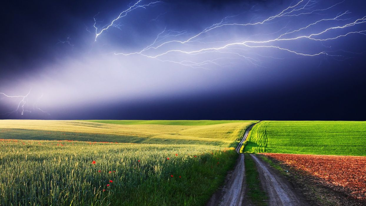 storm grass wallpaper