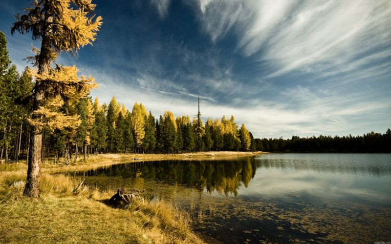 nature trees lakes wallpaper