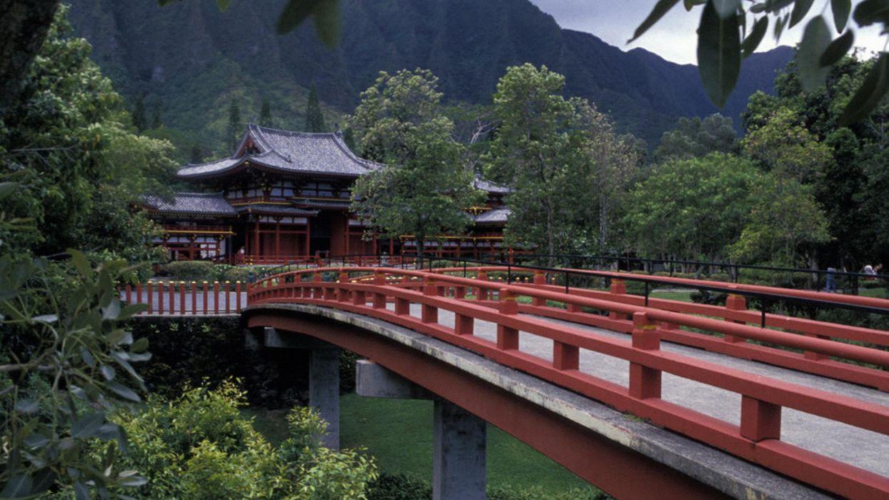 forests architecture bridges temples wallpaper