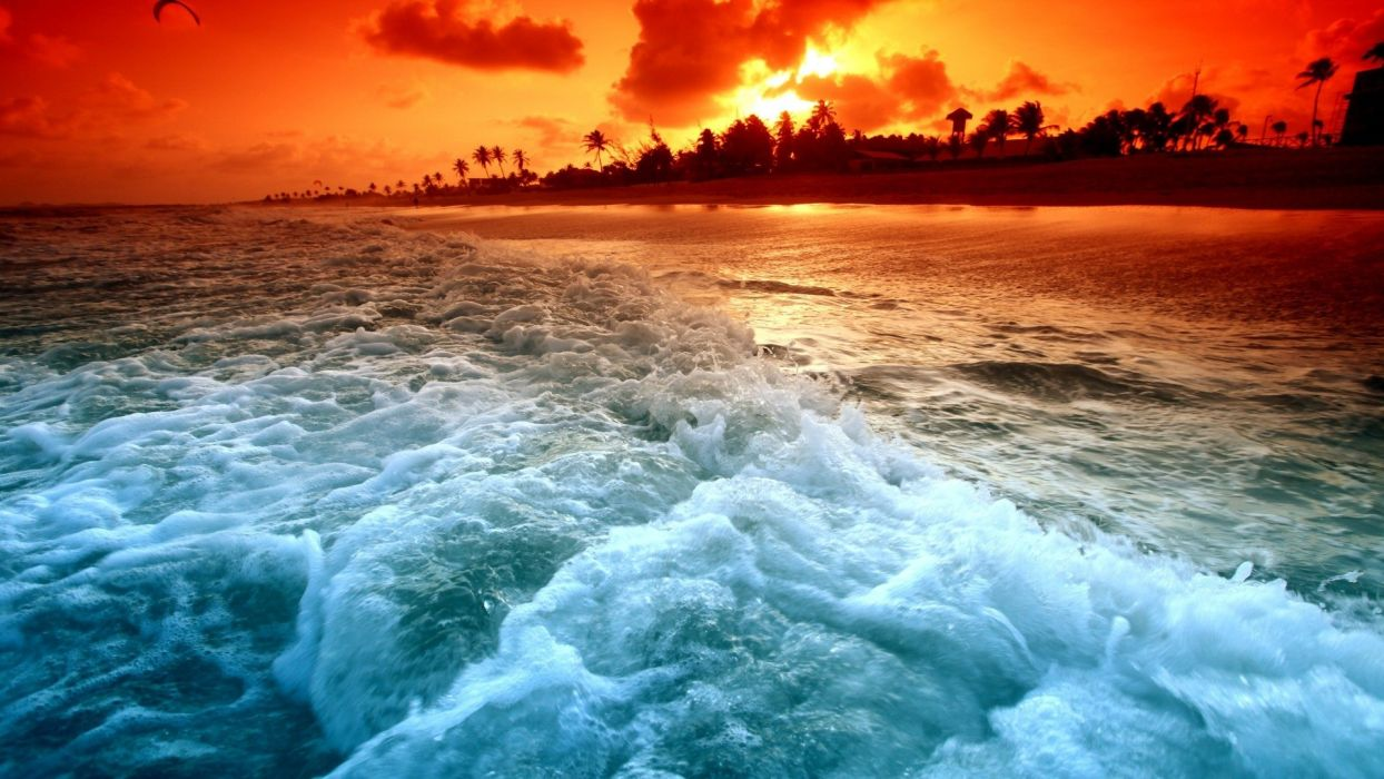sunset ocean waves palm trees sea beaches wallpaper