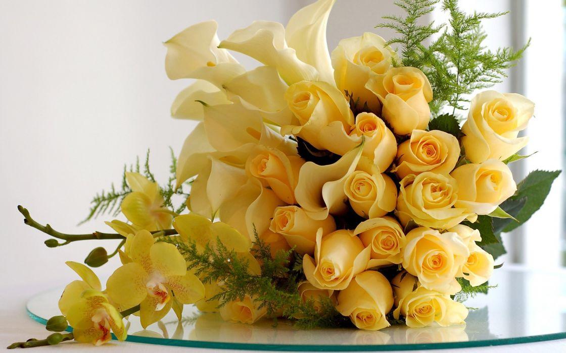 flowers roses yellow rose wallpaper