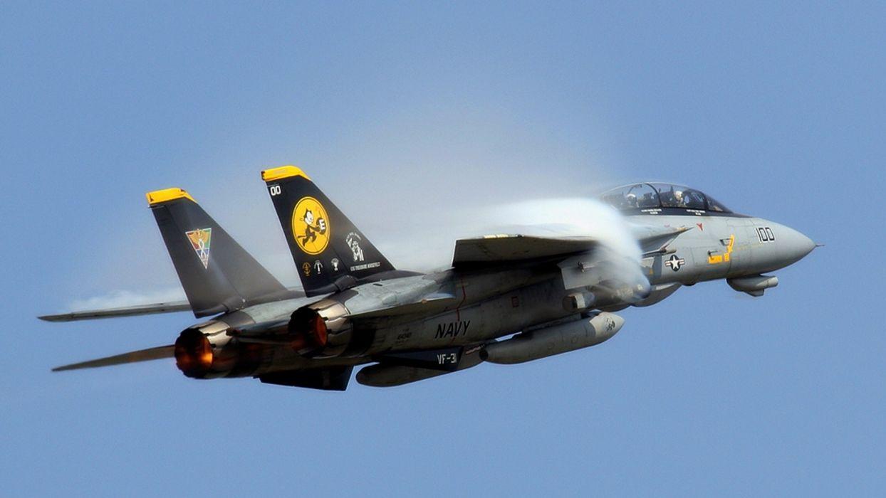 aircraft F 14 Tomcat wallpaper