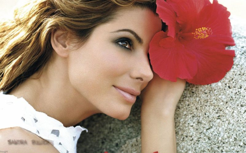 women Sandra Bullock hibiscus wallpaper