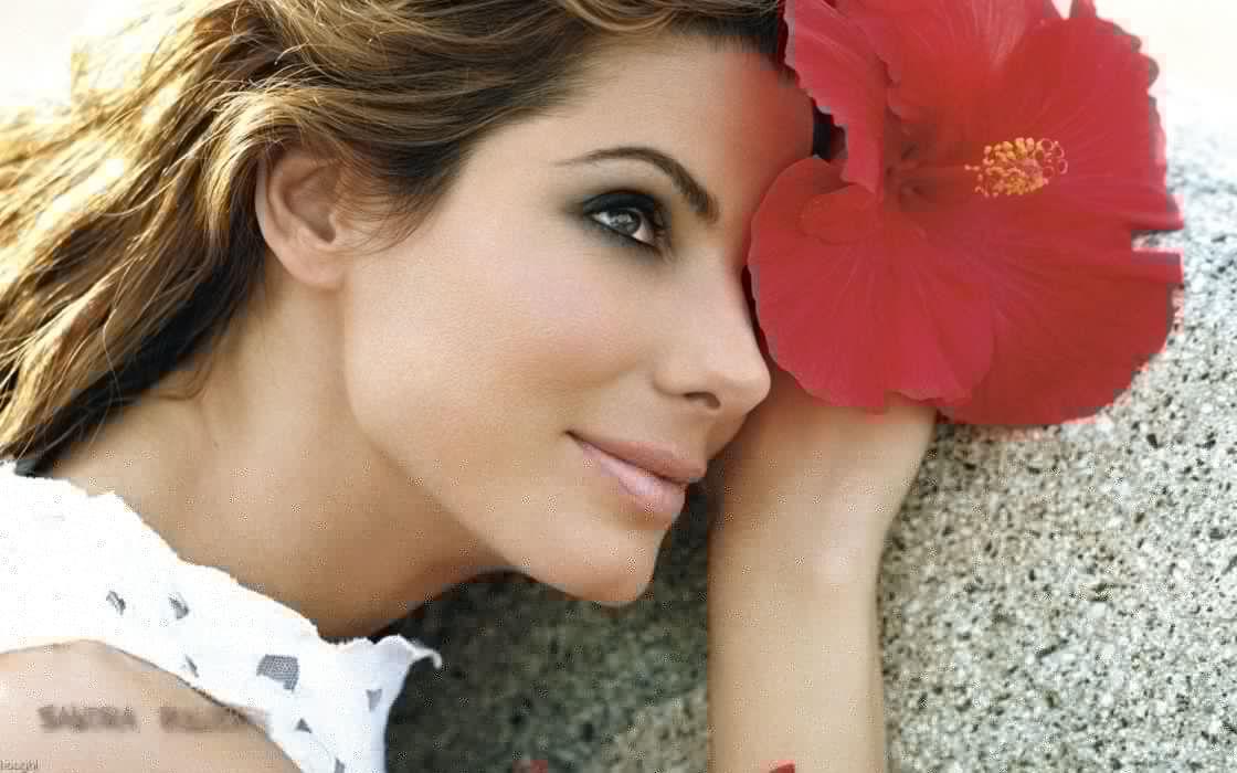 women Sandra Bullock hibiscus wallpaper
