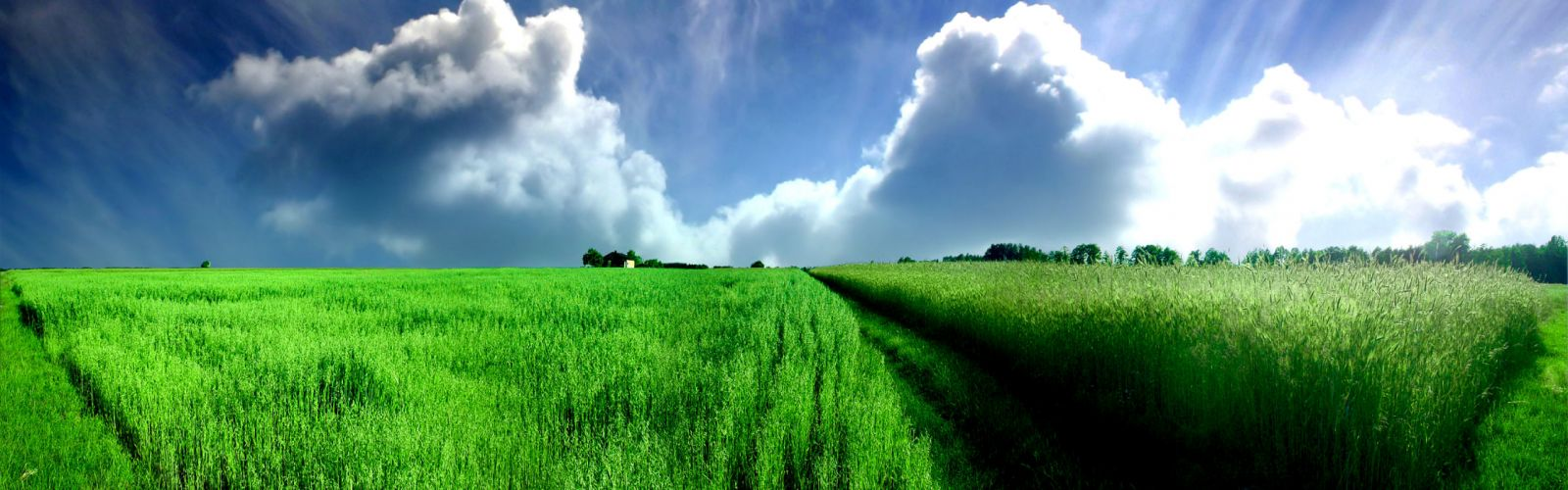 fields skyscapes wallpaper