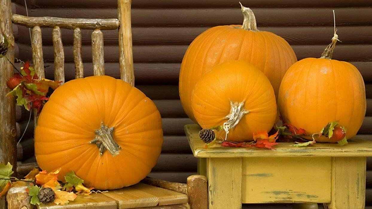 autumn north Canada Vancouver parks pumpkins wallpaper