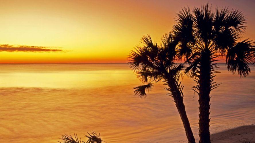 sunrise silhouettes islands parks South Carolina sea wallpaper