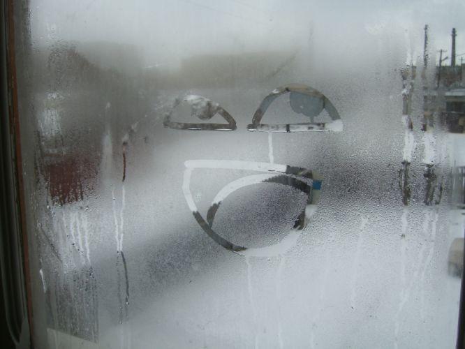 condensation wallpaper