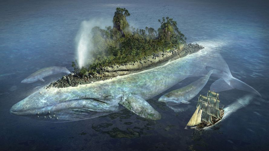 ships islands whales vehicles sea wallpaper