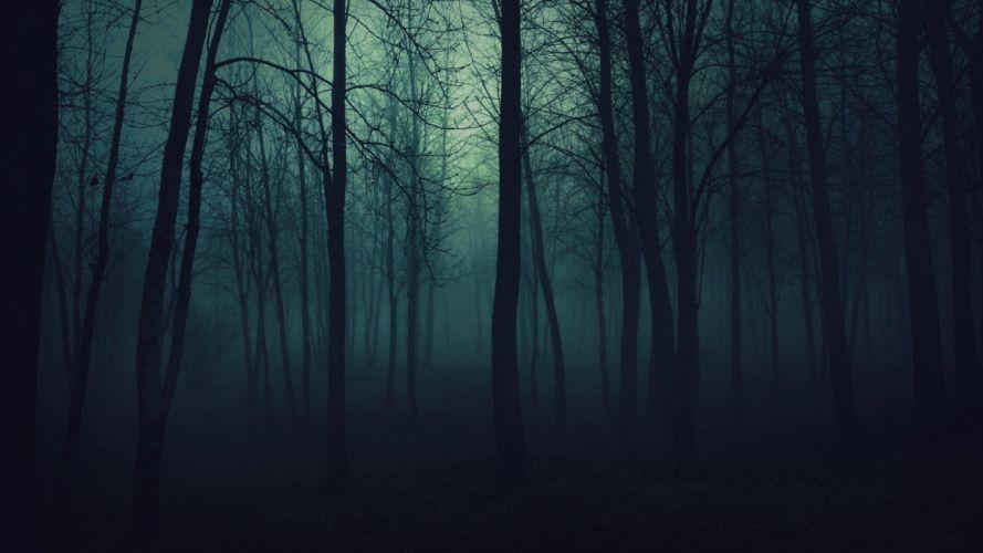 creepy trees dark forests mist wallpaper