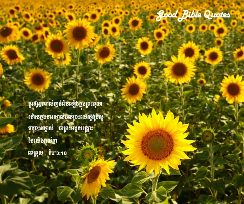 BIBLE-VERSES religion quote text poster bible verses    j wallpaper