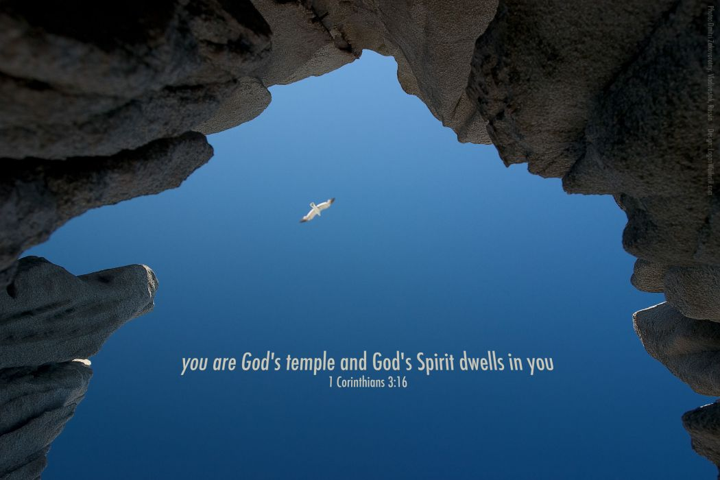 BIBLE-VERSES religion quote text poster bible verses  ts wallpaper