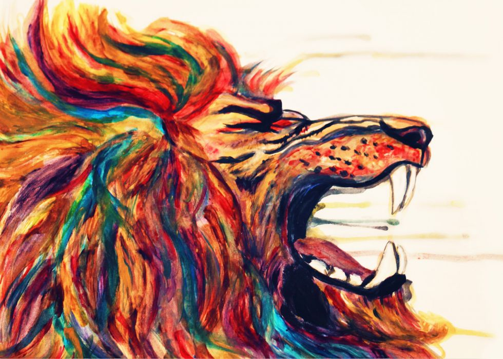 LION cat predator  e wallpaper