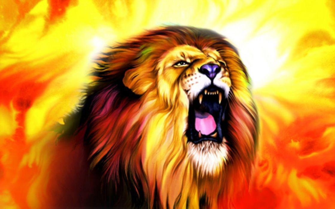 LION cat predator  rh wallpaper