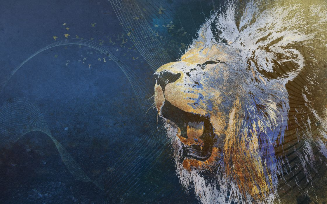 LION cat predator psychedelic      f wallpaper