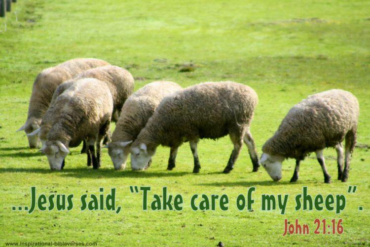 religion BIBLE-VERSES quote text poster bible verses j wallpaper