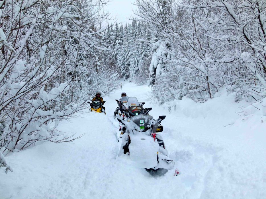 snowmobile winter snow    g wallpaper
