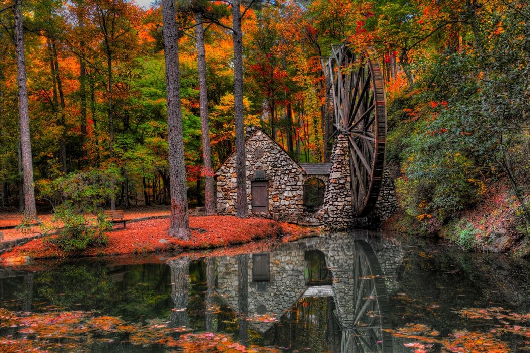 autumn trees mill walk park alley water mill forest leaves reflection      h wallpaper