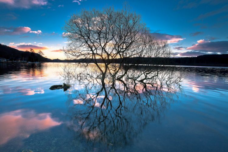 forest reflection lake trees sunset f wallpaper