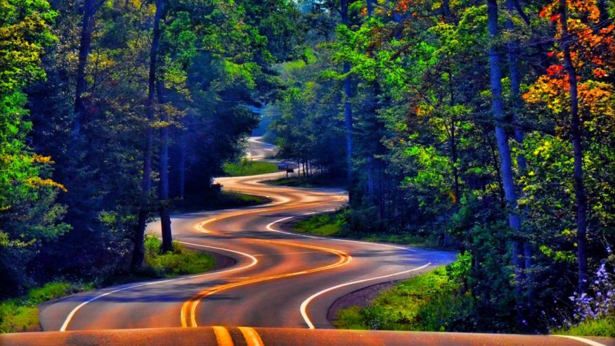 forest road trees color autumn g wallpaper