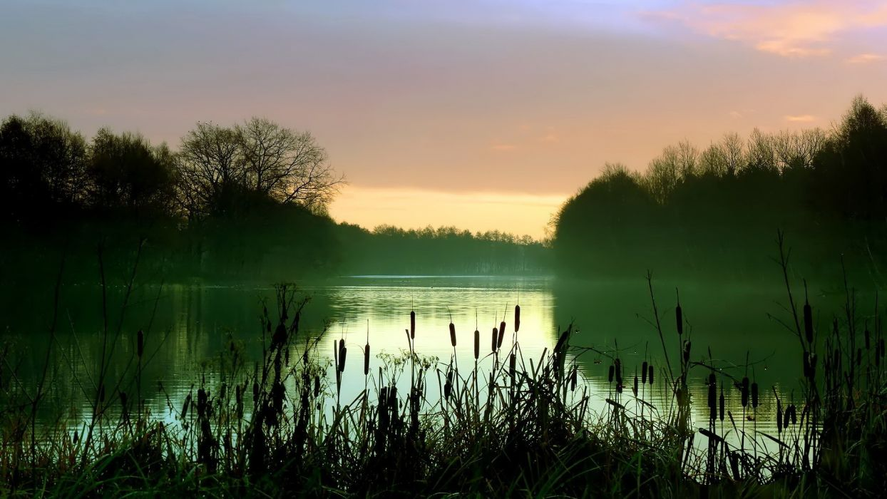river evening bushes trees reflection      h wallpaper
