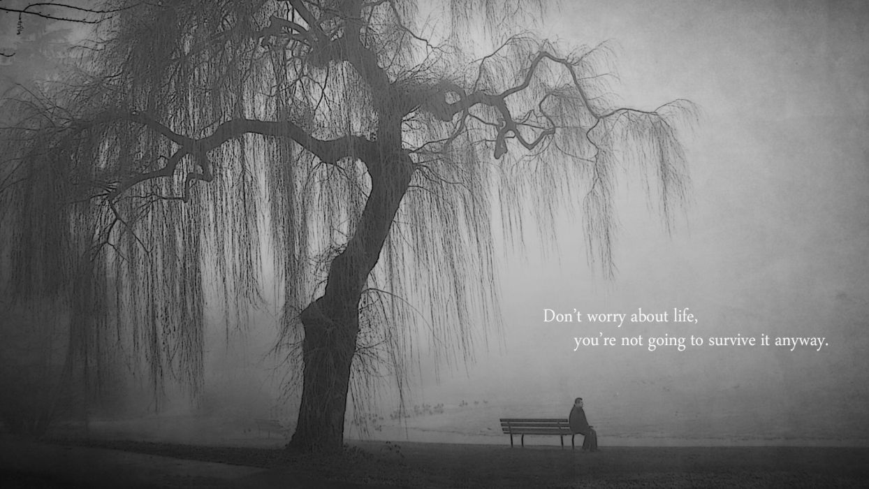 quotes bench lonely grayscale lakes wallpaper