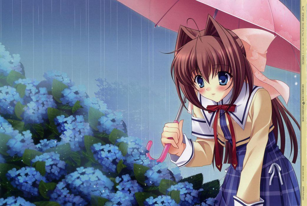 da-capo asakura otome da capo da capo ii rain umbrella wallpaper