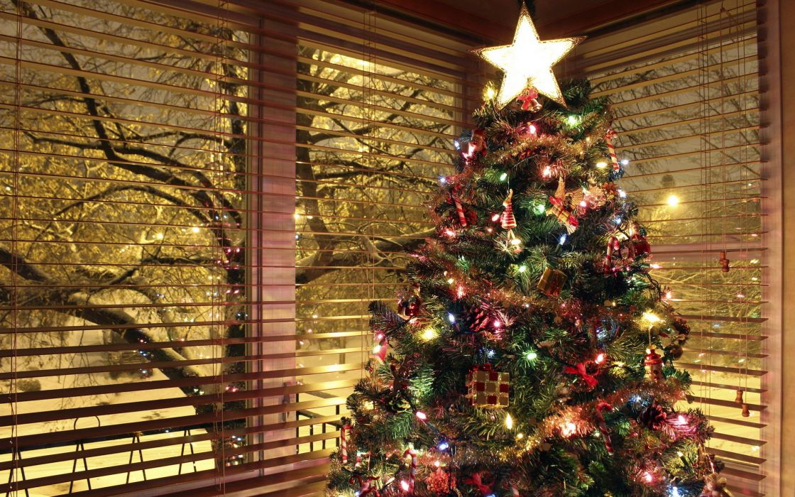 holiday house tree wallpaper