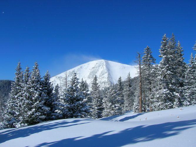 mountain trees winter landscape wallpaper