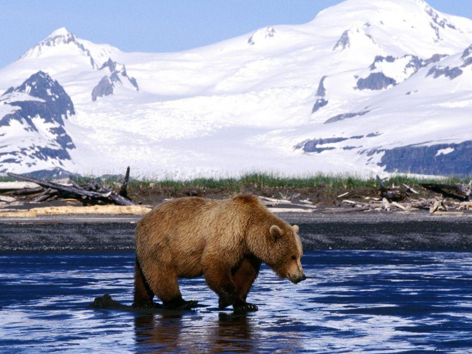 bear river mountains   i wallpaper