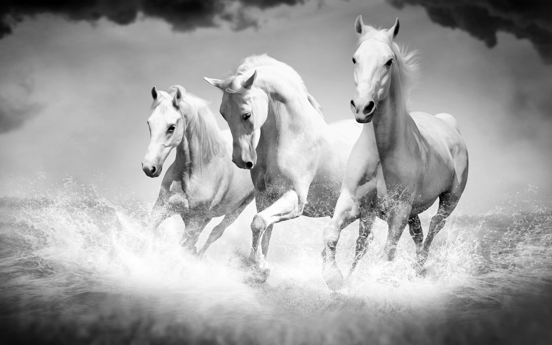 Horse mood fantasy       h wallpaper