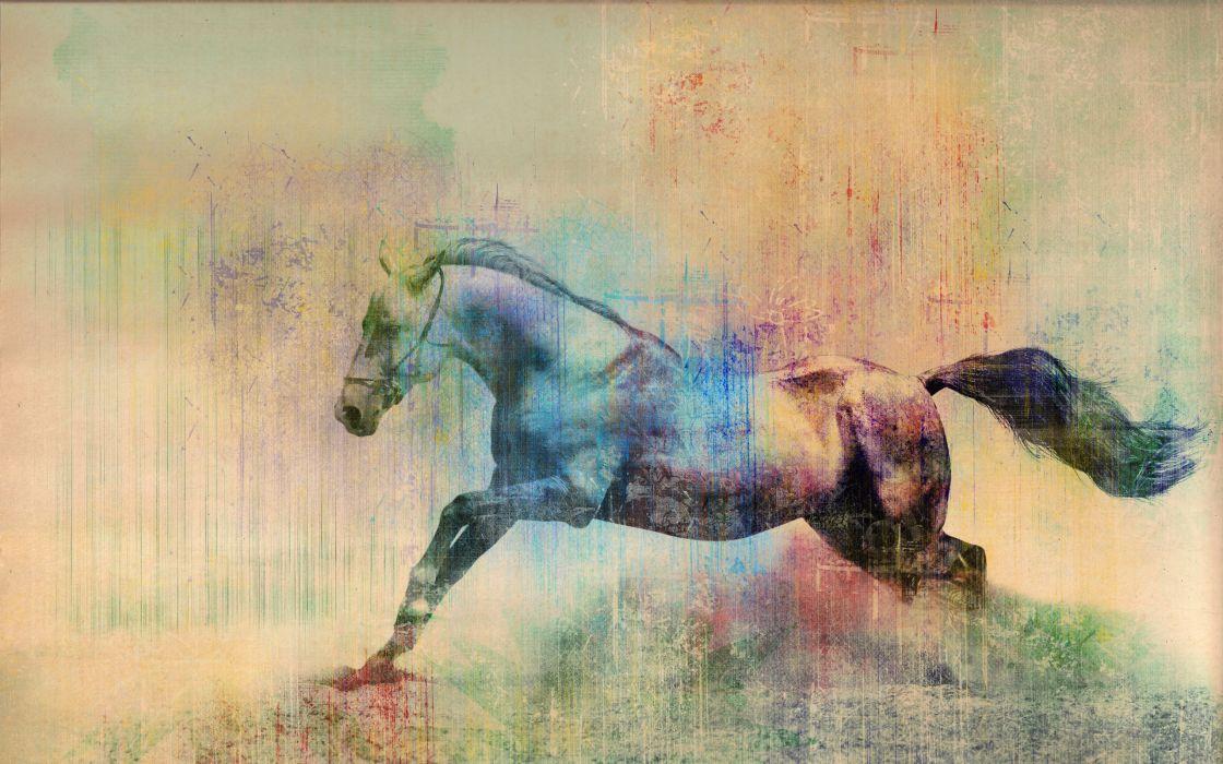 Horses Painting Art Animals horse wallpaper