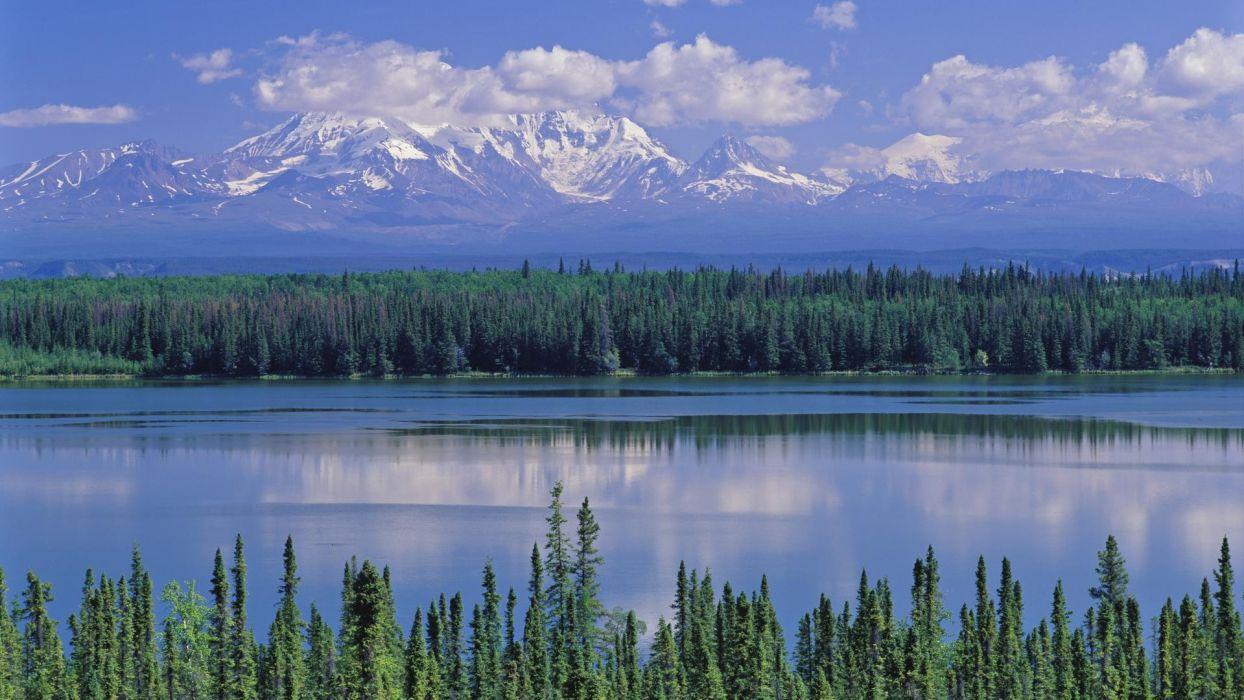 Alaska willow National Park Mount wallpaper