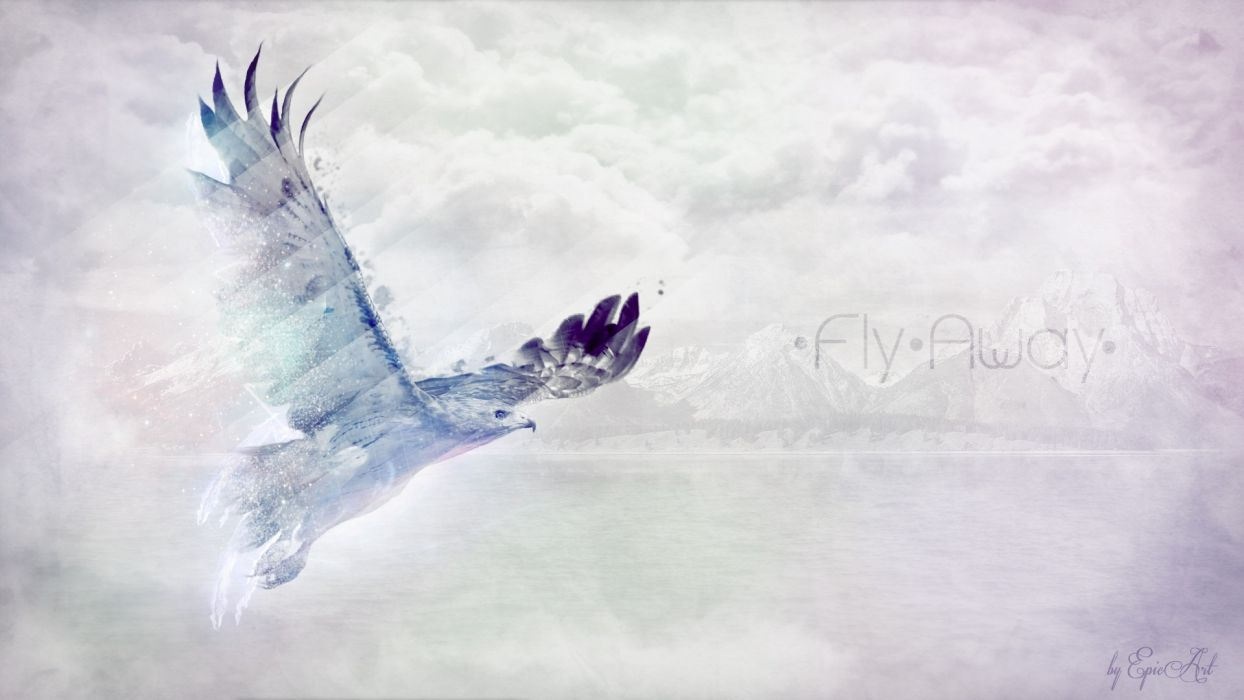 light water eagles fly fly away photo manipulation colors away SpeedART manipulation skies sea wallpaper