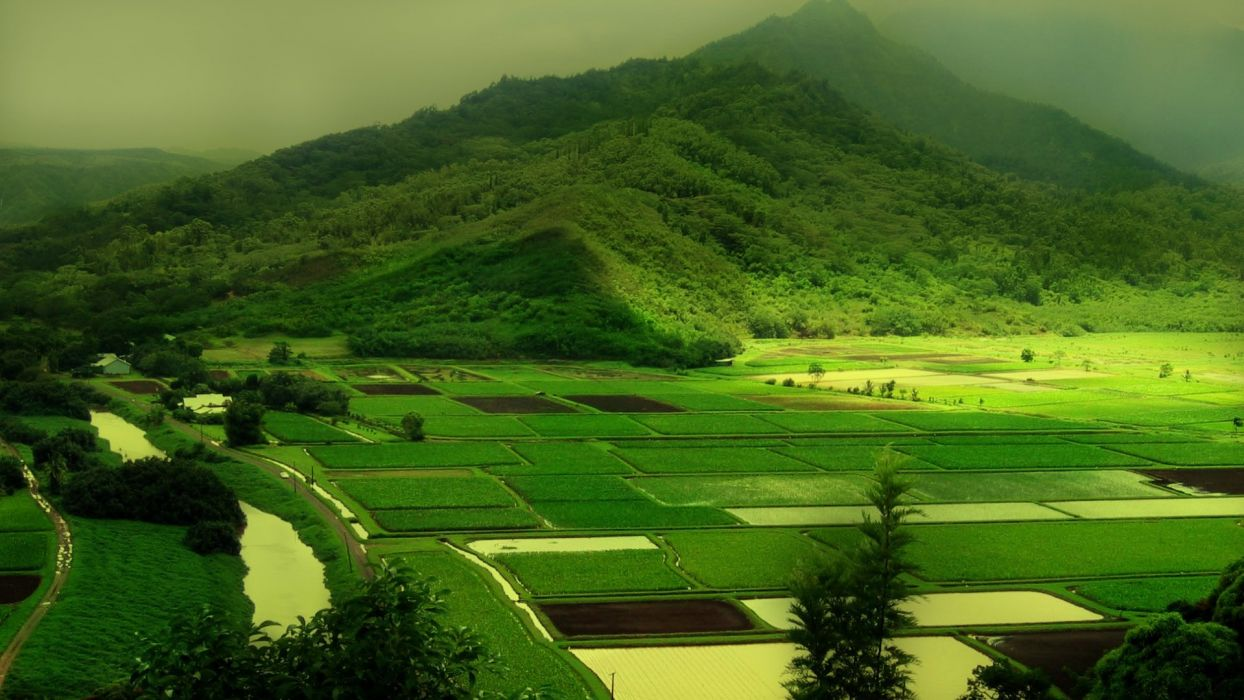 mountains landscapes nature green field  rivers farm wallpaper
